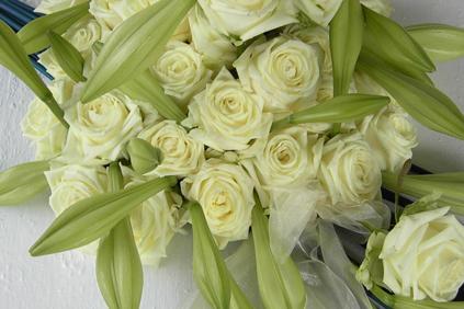 Portfolio: Florales